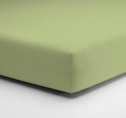 Žalia paklodė Aloe-Vera PLAČIAU ČIA
